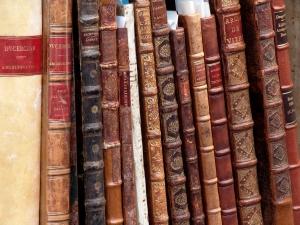 Die Bibliothek - Impressionen